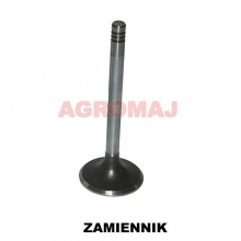 MWM Sací ventil TD226-B6 TD226-B3