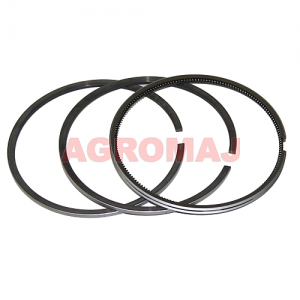 Piston rings - Diameter: 100,00