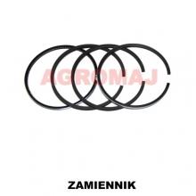 FENDT Piston ring set D325-3 D225-6