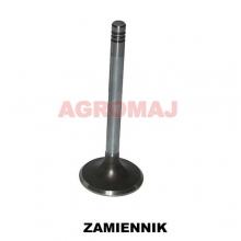 MWM Suction valve TD226-B6 TD226-B3