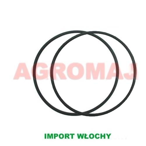 SAME O-ring Tulei cylindrowej 1003 1004, 2.1539.193.0, 129/215391930, 215390390, 215391930, 29/38-403, fin1099or